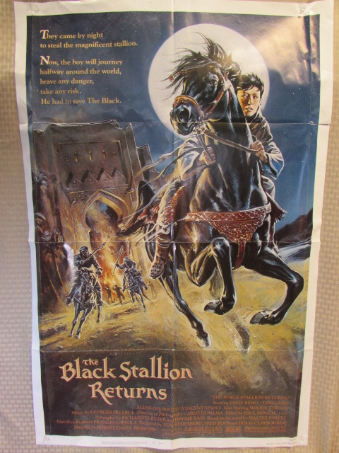 VINTAGE BLACK STALLION MUSTANG COUNTRY MOVIE POSTERS SHOWER CURTAIN