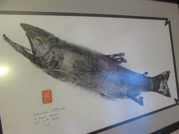 FRAMED PICTURE OF LAHONTAN CUTTHROAT